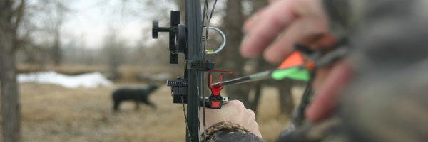 3D-archery