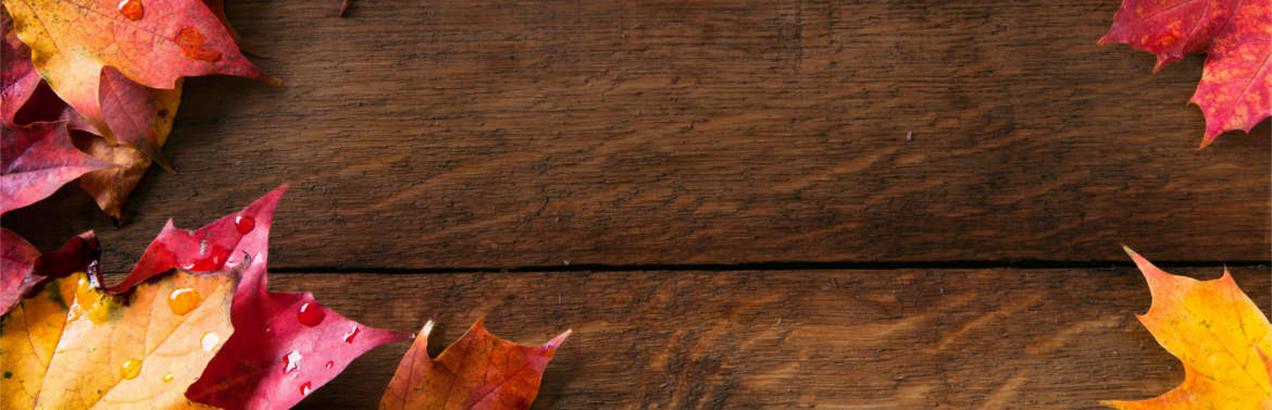 Thanksgiving Background Banner